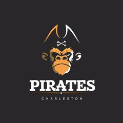 Modern vector professional logo emblem pirates monkey