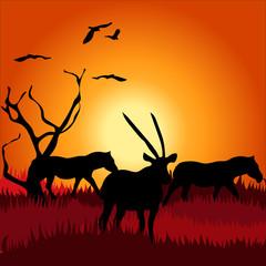 Africa safari - silhouettes of wild animals