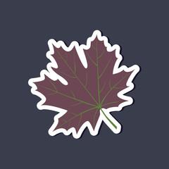 paper sticker on stylish background Maple Leaf