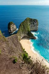 Wall Mural - Kelingking beach at Nusa Penida island. Indonesia