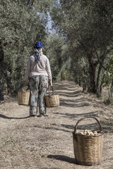 farmer woman carrying baskets full with fruits