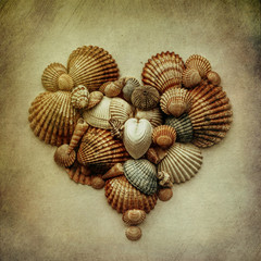 Shells, heart-shaped