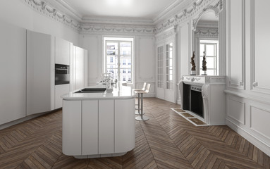 Open plan modern luxury kitchen interior