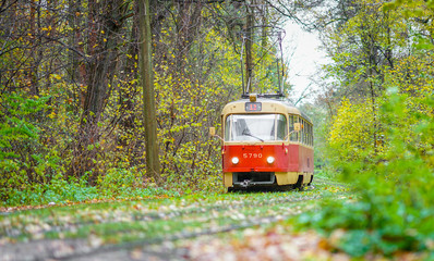 a tram ride in the autumn forest