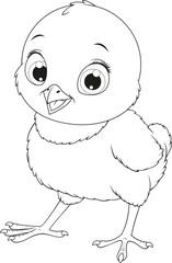 .Little funny chicken