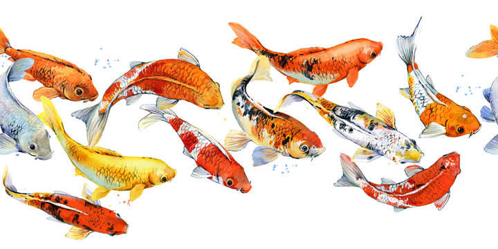 watercolor illustration of koi carp fish seamless pattern
