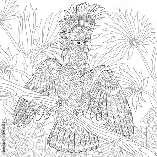 Coloring Page Of Australian Cockatoo Parrot In Tropical Jungle Forest Freehand Sketch Drawing For Adult