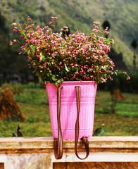 Buckwheat flowers bamboo basket
