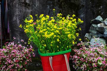 Yellow cabbage flower bamboo basket