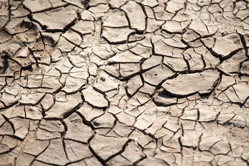 Cracked Dry Mud and Soil
