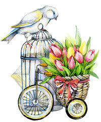 canary bird and decorative birdcage. watercolor illustration
