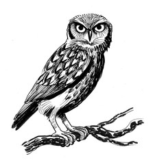Photo Stands Owls cartoon Ink illustration of an owl sitting on a tree