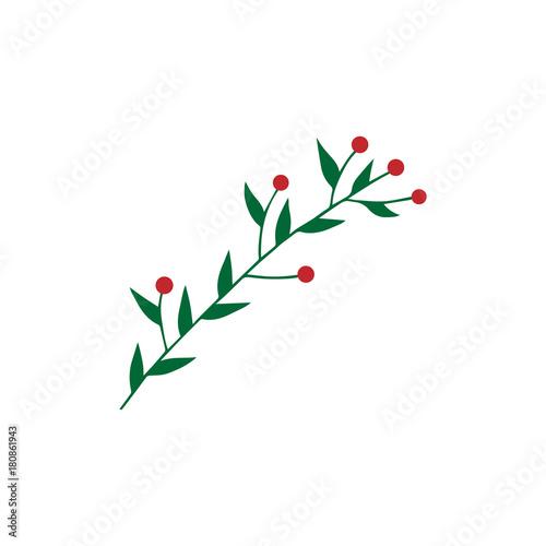 Christmas Branch Vector.Hand Drawn Christmas Mistletoe Branch Vector Illustration