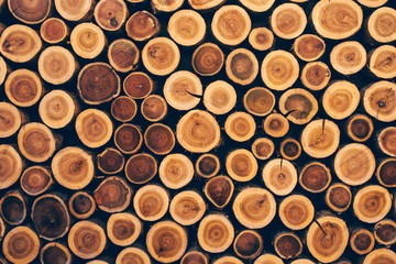 Stacked wood logs as texture
