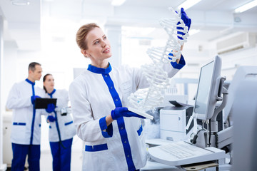DNA structure. Beautiful reflective  female  researcher carrying DNA model and studying it  while wearing labcoat