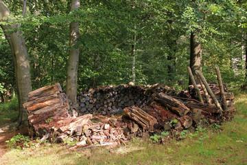Brennholzstapel im Wald