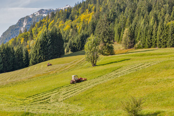 tractor mowing grass on an alpine lawn