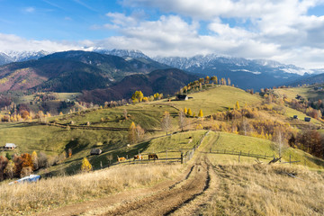 Autumn in Moeciu village, Transylvania, Romania