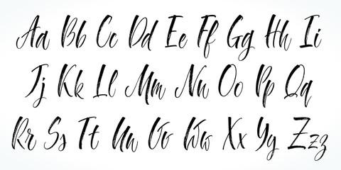 Brush lettering vector alphabet. Modern calligraphy, handwritten letters. Vector illustration