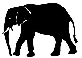 Elephant silhouette vector eps 10