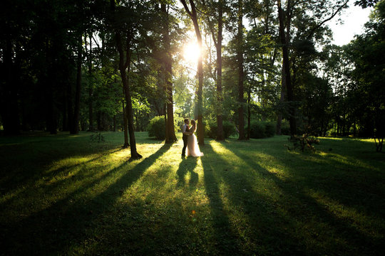 Beautifull wedding couple kissing at sunset in the forest