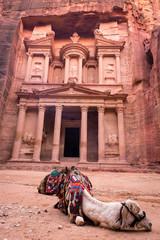 Rest in Petra