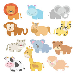 Cute baby animal with bright colour variation style