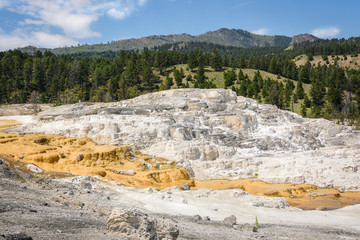 Mammoth Hot Springs. Northern entrance, Yellowstone Park, USA