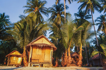 cheap budget accommodation on the beach, bamboo huts hotel