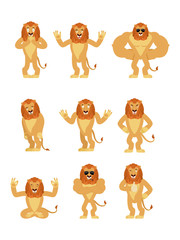 Lion set poses and motion. Wild animal happy and yoga. Beast sleeping and angry. guilty and sad. Vector illustration