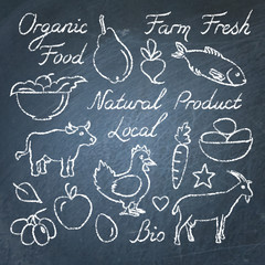 Set of hand drawn eco food sketches on chalkboard