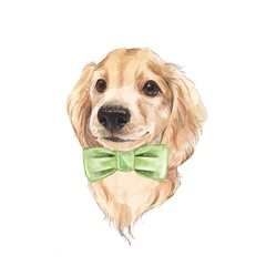 Cute dog sketch 2. Hand painted. Watercolor illustration.