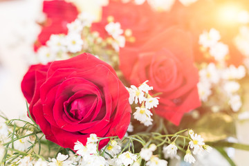 Close up red roses bouquet