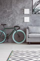 Apartment with gray interior design
