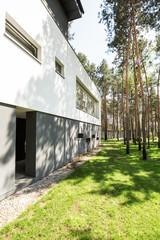 Geometric simplicity emphasized nature
