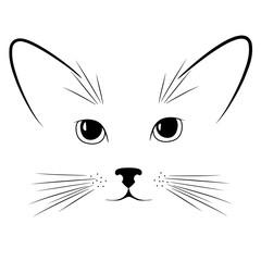 Cat's face. Animal. Kitten. Muzzle. Head. Ears. Mustache. Cute.