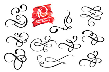 Vector set of calligraphic design flourish elements and page decorations. Elegant collection of hand drawn swirls and curls for your design