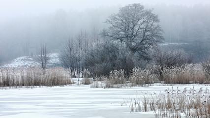 mglisty zimowy poranek
