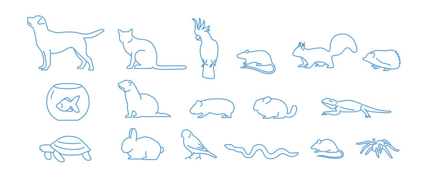 Collection of pet icons drawn with blue contour line on white background. Set of domestic animal linear symbols. Vector illustration.