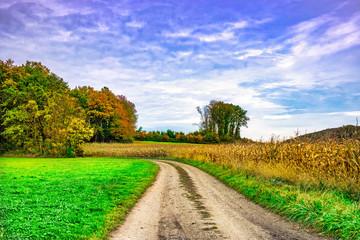 Farbenfrohe Landschaft Im Herbst