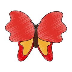 Butterfly beautiful symbol