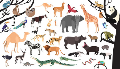 Collection of exotic animals and birds living in savannah and tropical forest or jungle isolated on white background. Set of cute cartoon characters. Flat bright colored vector illustration.