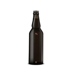 Glass Beer dark Brown Bottle On White