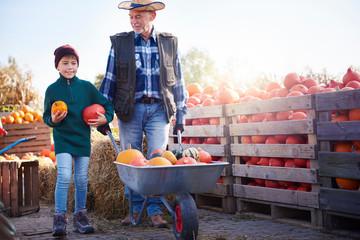 Farmer and grandson at pumpkin farm