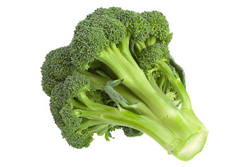 Broccoli cabbage on white