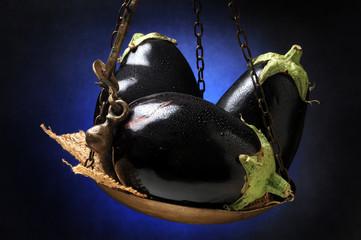 Solanum melongena Μελιτζάνα Aubergine Melanzane Patlidžan बैंगन Բադրիջան Jajčevec חציל Berenjena Psianka podłużna Patëllxhani 茄 Munakoiso Lilek vejcoplodý باذنجان