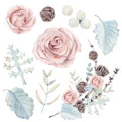 watercolor set of  botanical illustrations.