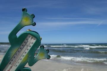 Lustiges Thermometer, um die Wasser- und Lufttemperatur zu messen...sieht aus wie ein Frosch