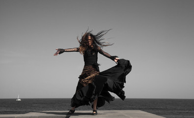 flamenco by oceanside