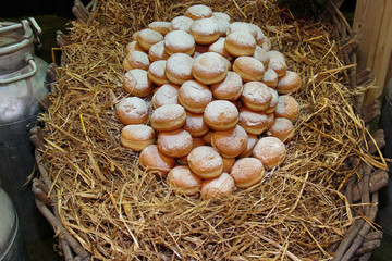 Heap of Sweet Bavarian Cream Filled Donuts on Bed of Straw